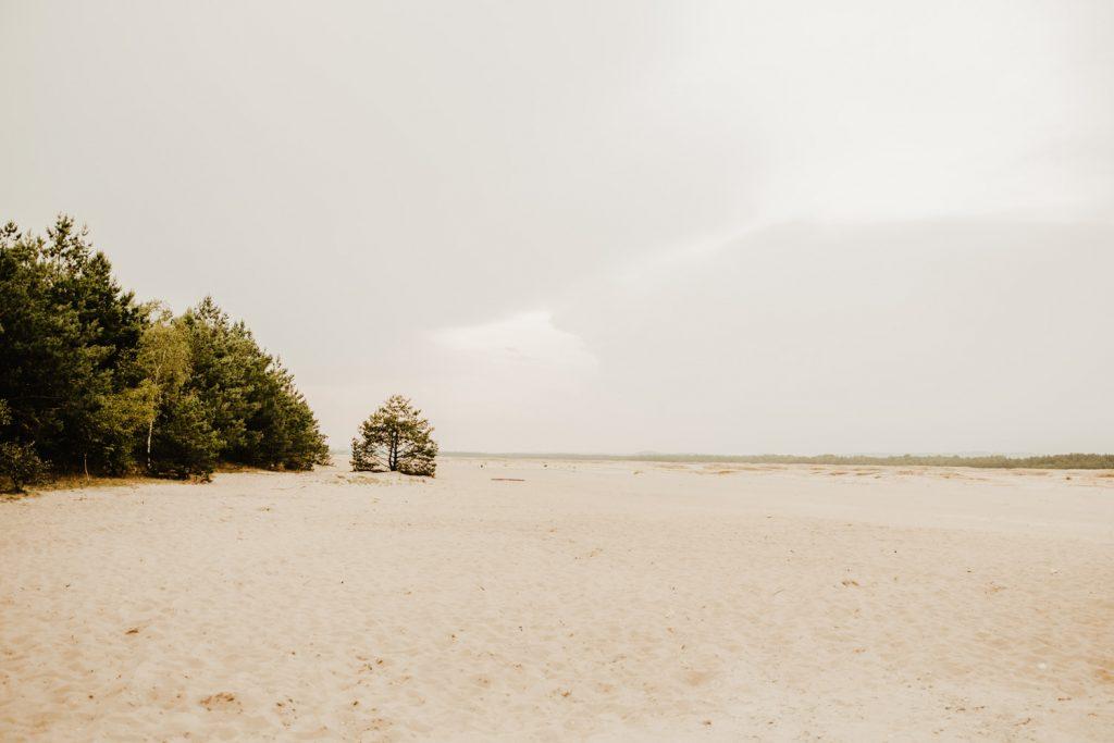 Sesja na Pustyni Błędowskiej | Plener ślubny | J & A 1