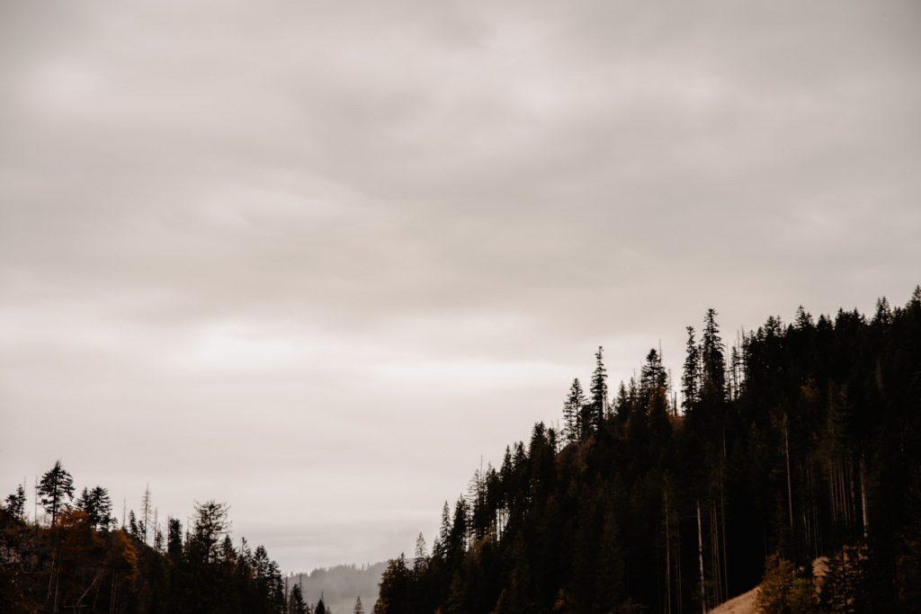 Sesja ślubna w górach 56
