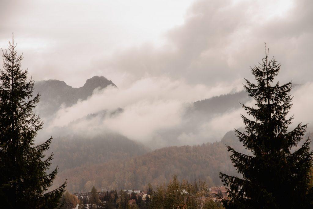 Sesja ślubna w górach 77